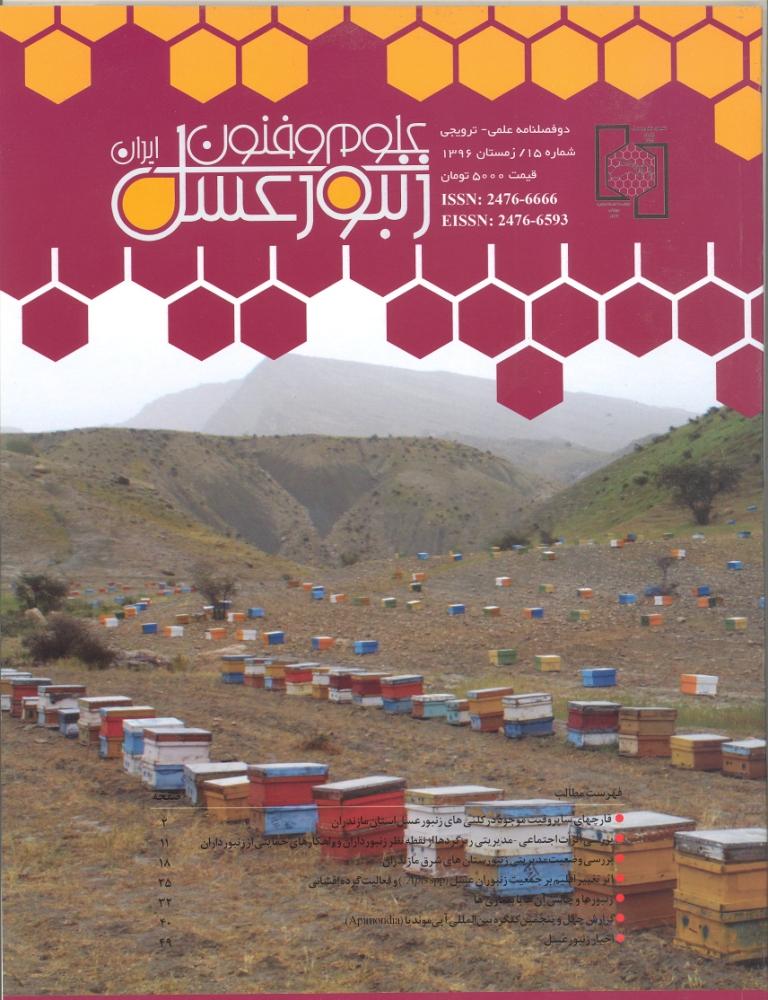 علوم و فنون زنبور عسل ایران
